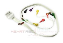 ECG Holter Cable of HeartRec Eco